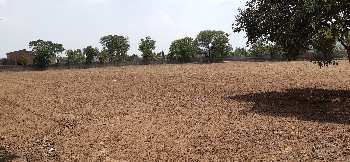 4 acre land for sale one farm scheme  in village rani ka singola