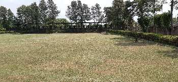 2 acre land farm house scheme near sohna ballabgarh road