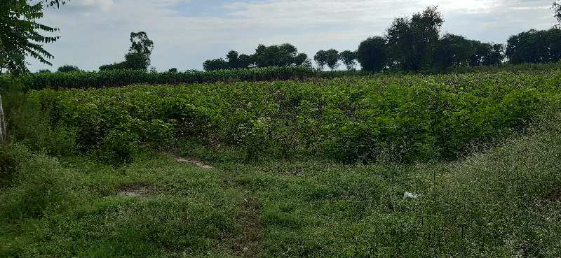 11 acre warehouse land for sale on main sohna palwal road near sohna