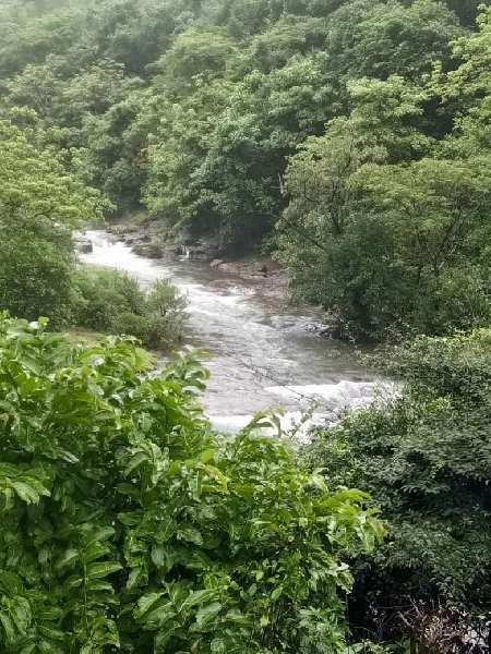 Residential Plot For Sale In Tamhini, Pune