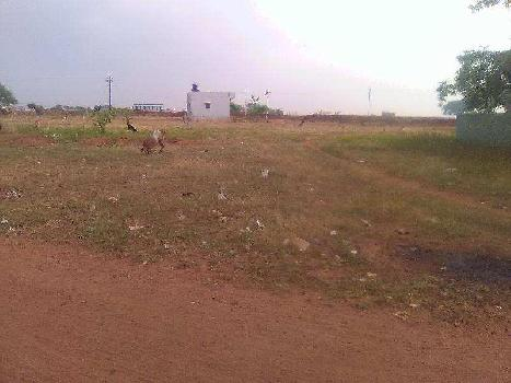 Residential Land / Plot for Sale At Kallapalayam