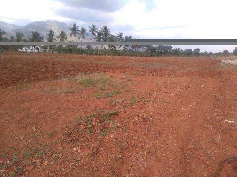 Residential cum commercial plot in eachanari area.