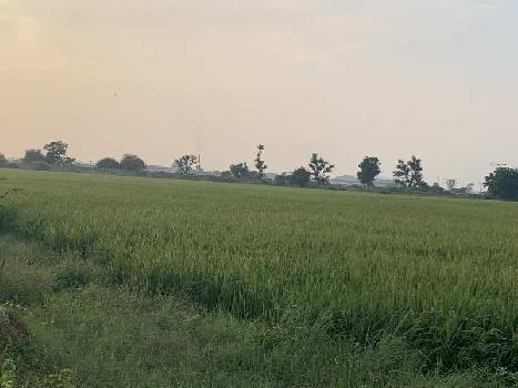 Agricultural/Farm Land for Sale in Shilaj, Ahmedabad