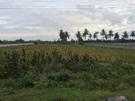 50 Acre Agricultural/Farm Land for Sale in Tavarakere, Bangalore