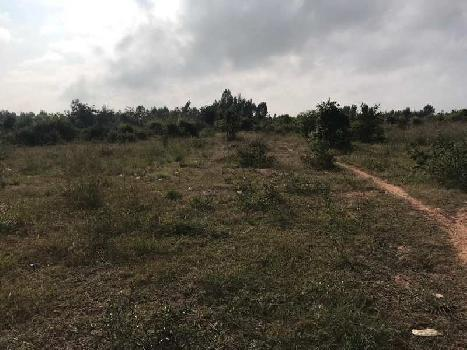 110 Acre Industrial Land / Plot for Sale in Anekal Road, Bangalore