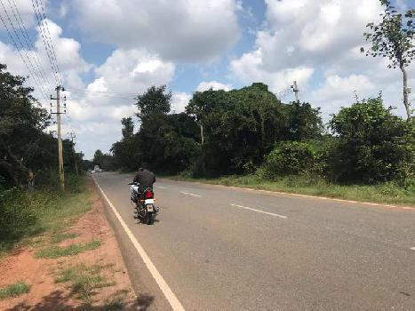 10 Acre Agricultural/Farm Land for Sale in Hoskote Malur Road, Bangalore