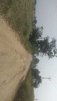 Agricultural/Farm Land for Sale in Tandur, Vikarabad