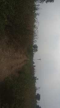 Agricultural/Farm Land for Sale in Tandur, Vikarabad