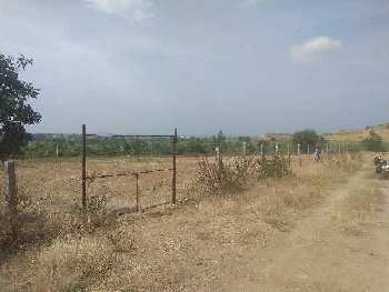 Agriculture/farm land