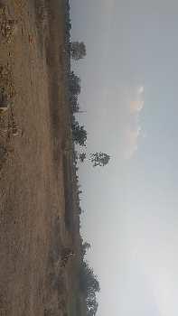 Agriculture farm land