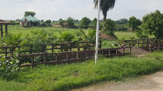 240 Sq. Yards Residential Plot for Sale in Jewar, Gautam Buddha Nagar