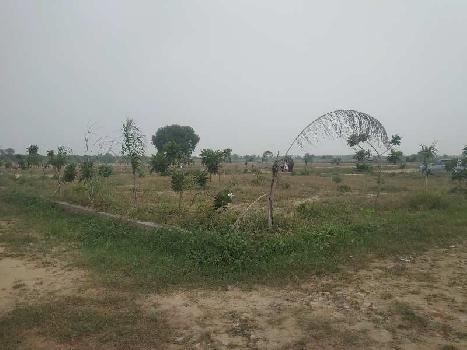 70 Sq. Yards Residential Plot for Sale in Jewar, Gautam Buddha Nagar