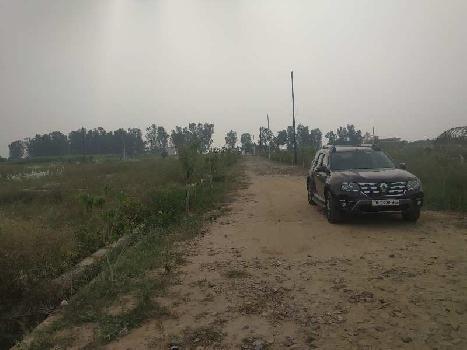300 Sq. Yards Residential Plot for Sale in Jewar, Gautam Buddha Nagar