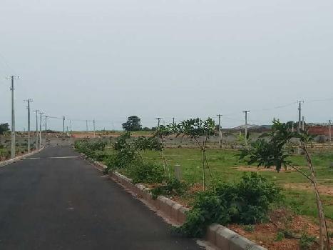 Open plot at Shamirpet
