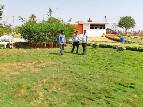 Open plots at yadagirigutta