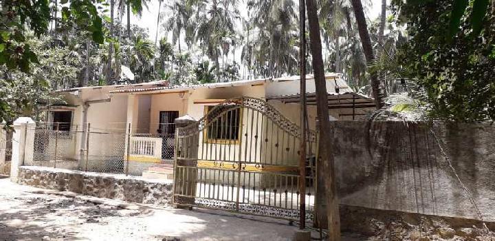 Best property in akshi beach