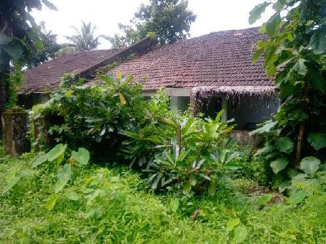 Best property in murud