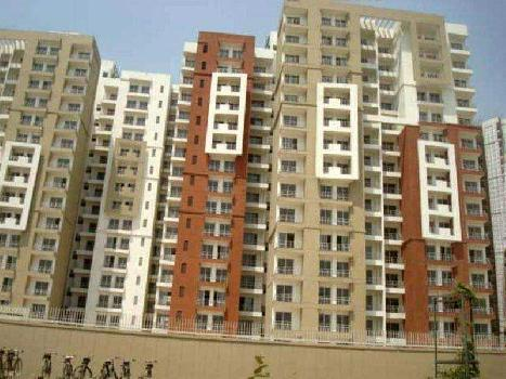 3 BHK Apartment for Rent in Sector 110, Noida