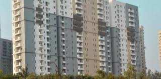 3 BHK Residential Apartment for Rent in Noida