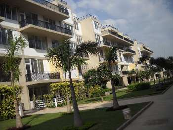 High end Builder Floor Apartment Flat House for Sale in Chandigarh