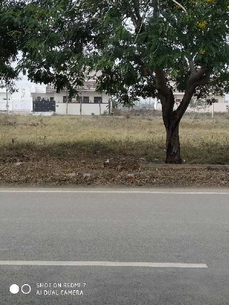 Sector 2 Bahadurgarh Residential Plot