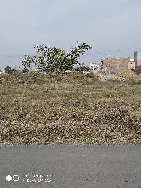 Residential Plot for Sale in Sector 13, Bahadurgarh