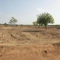Available Land/ Plot For Sale in well develop Area