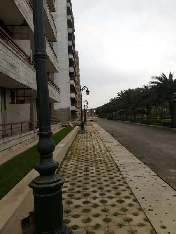 Delhi 99 City of Garden