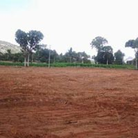 Residential Land /plot for Sale At Roorkee