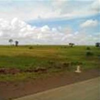 Agricultural Farm Land for Sale At Roorkee