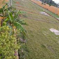 Residential Land/ Plot for Sale At Dehradun