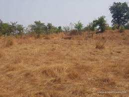 Commercial land