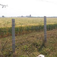 Agricultural Farm Land for Sale Indore