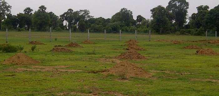 BH saha road land and plots