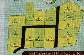 Farm Land for Sale in Alibag, Raigad