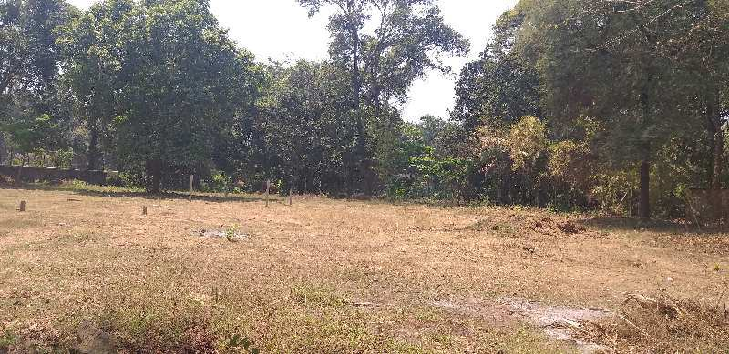 8300 sq.ft Agriculture farm land