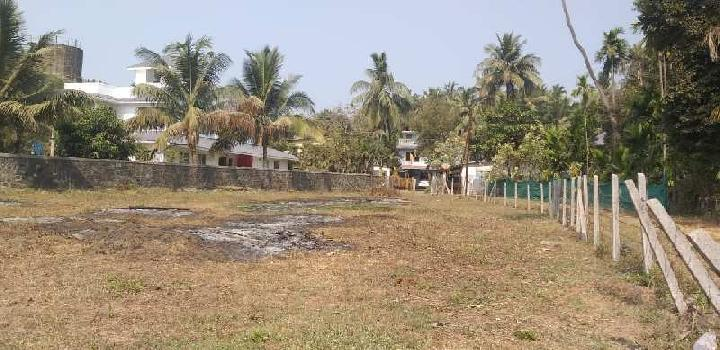 Agriculture land near akshi beach