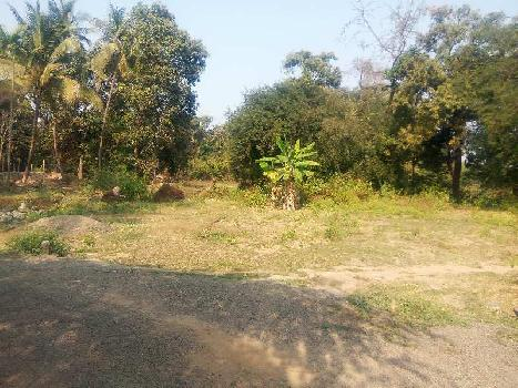 9000 sq. ft.  agriculture property for sale.