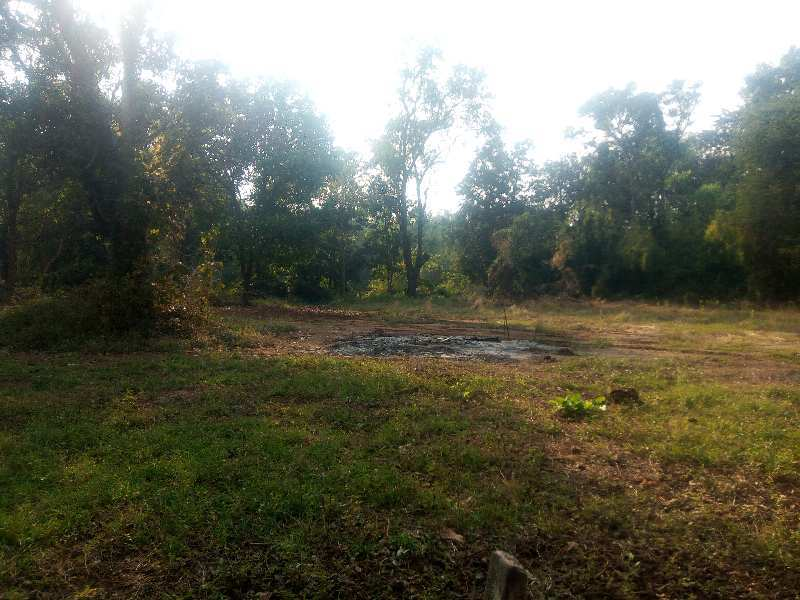 8000 sq.ft agricuture property for sale.