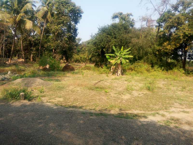 8500 sq. ft. agricuiture property for sale.