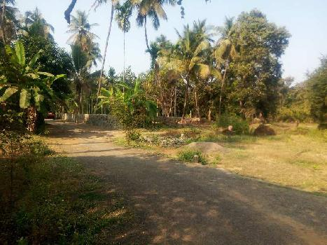 7000 sq. ft.  agriculture property for sale.