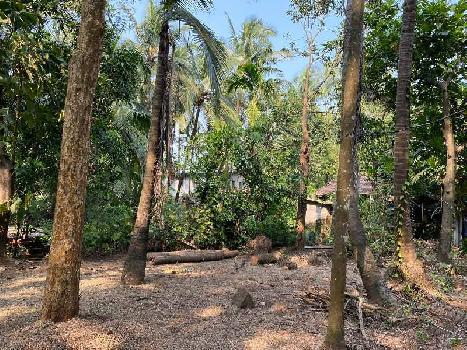 3000 sq. ft. agriculture property for sale.