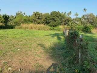 7200 sq. ft. agriculture plot close to nagaon beach.