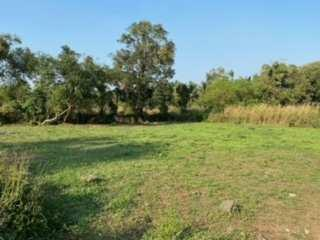 7200 sq. ft. agriculture plot close to nagaon beach.