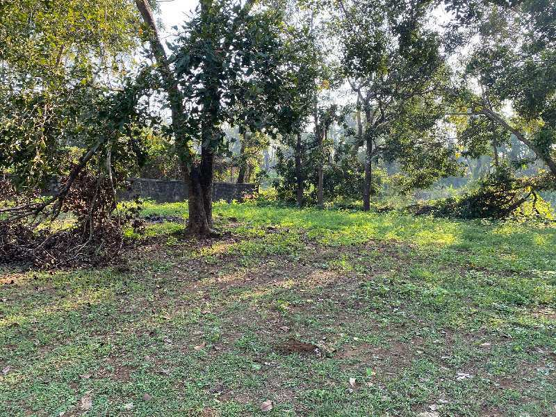 3100 sq. ft. agriculture property for sale.