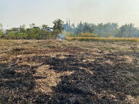 2500 Sq.ft. Agricultural/Farm Land for Sale in Nagaon, Raigad