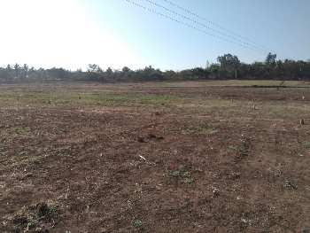 Agricultural/Farm land for sale in Hubli.