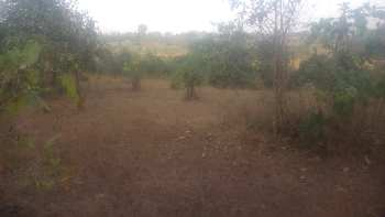 Farm/Agricultural land for sale in Khanapur