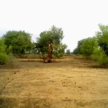 500 Sqyds Plot for Sale in Sector -17, Faridabad