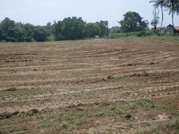 Residential Land/Plot for sale in Sector-14, Faridabad.